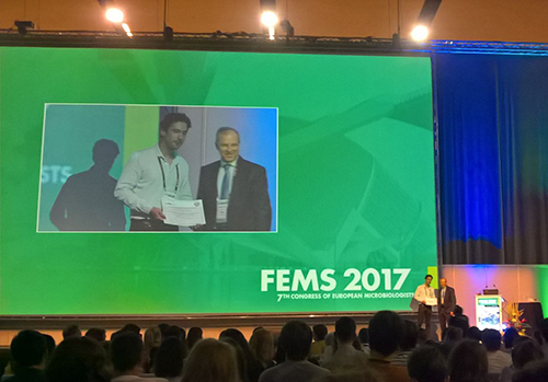 Felipe Cava at FEM 2017 picture private